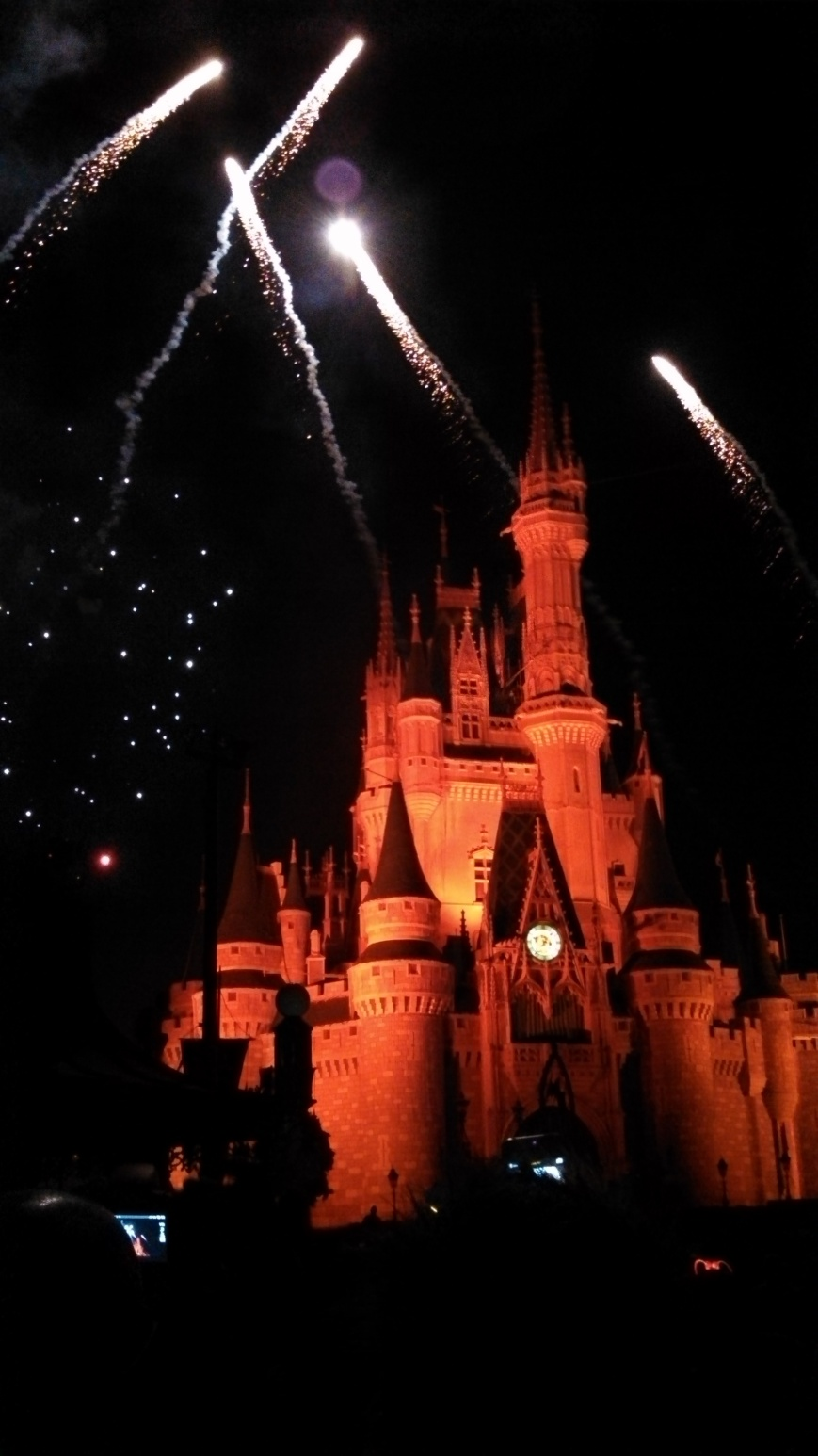 Nothing beats fireworks like Disney's fireworks:)