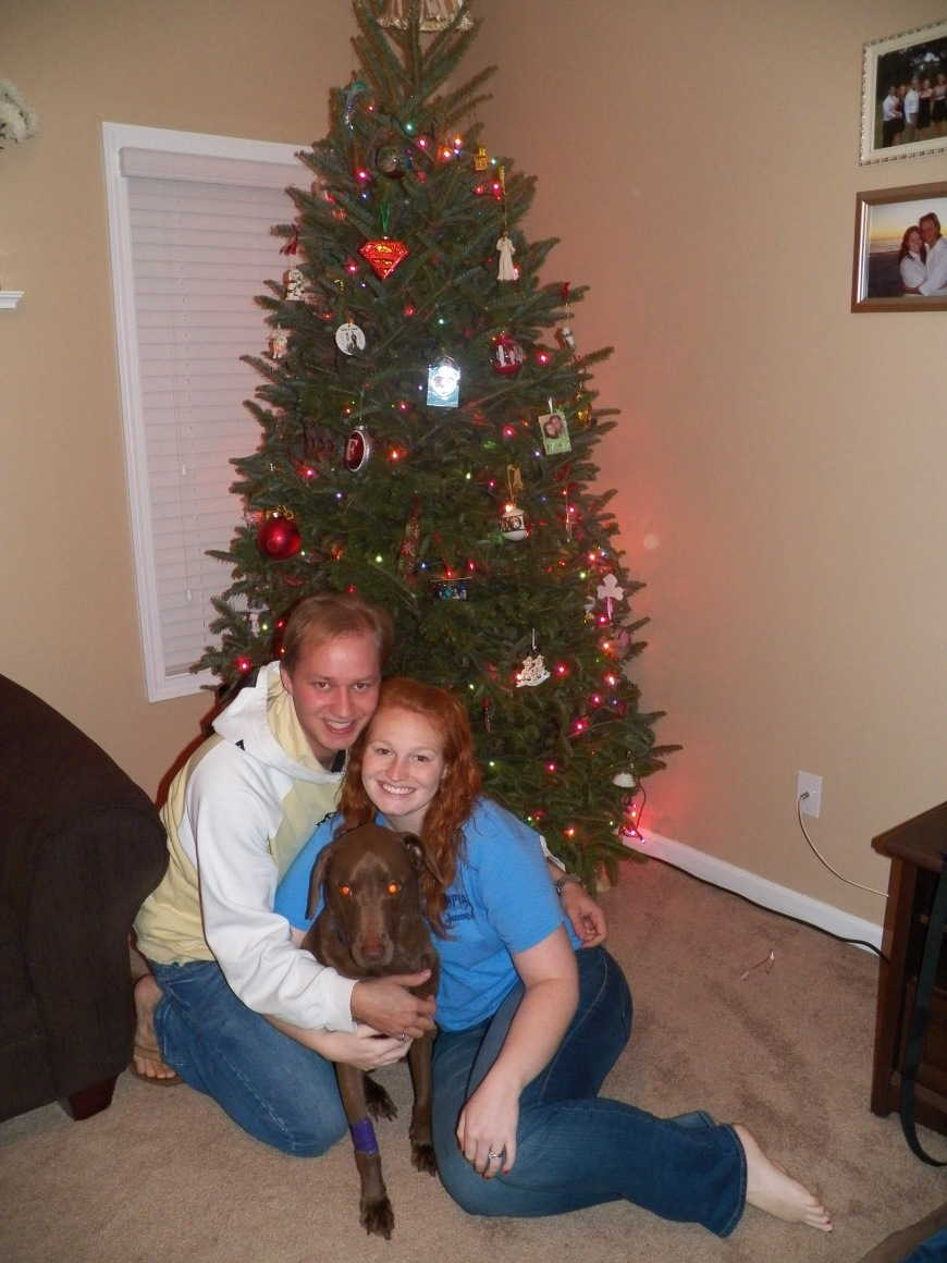 This was taken on the 27th, 2 days after we took Krypto in. We wanted a picture with Krypto in front of our Christmas tree. Excuse how we look. This was after 48 hours of no sleep.